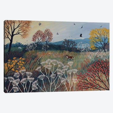 Across Autumn Meadow Canvas Print #JOG84} by Jo Grundy Canvas Art