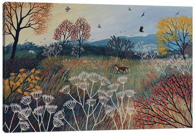 Across Autumn Meadow Canvas Art Print