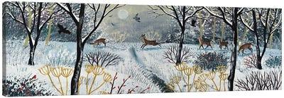 Through The Silence Of Snow Canvas Art Print