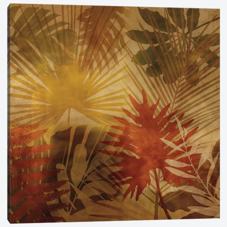 Sunlit Palms I Canvas Print #JOH100} by John Seba Canvas Artwork