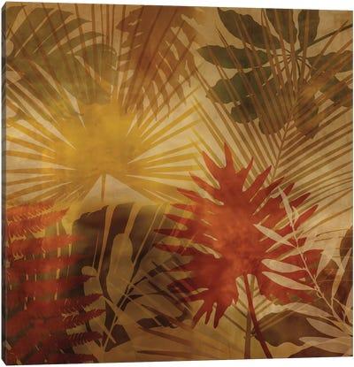 Sunlit Palms I Canvas Print #JOH100