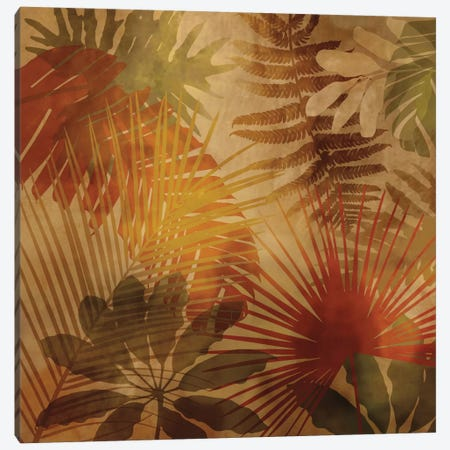 Sunlit Palms II Canvas Print #JOH101} by John Seba Canvas Artwork