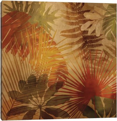 Sunlit Palms II Canvas Art Print