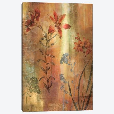 Tulip Garden I Canvas Print #JOH118} by John Seba Canvas Print