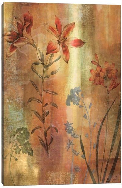 Tulip Garden I Canvas Art Print