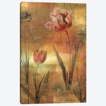 Tulip Garden II Canvas Print #JOH119} by John Seba Canvas Print
