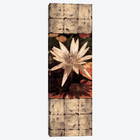 Waterlily Panel I Canvas Print #JOH120} by John Seba Canvas Wall Art