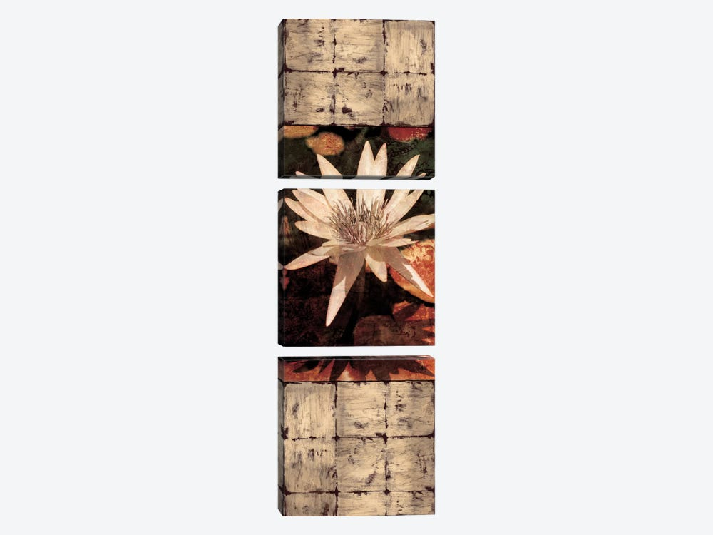 Waterlily Panel I by John Seba 3-piece Canvas Wall Art