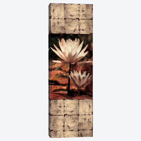 Waterlily Panel II Canvas Print #JOH121} by John Seba Canvas Wall Art