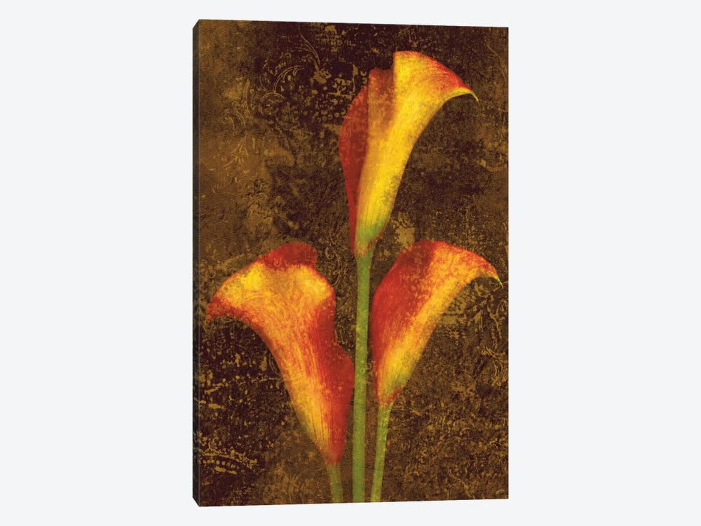 Callas by John Seba 1-piece Canvas Wall Art