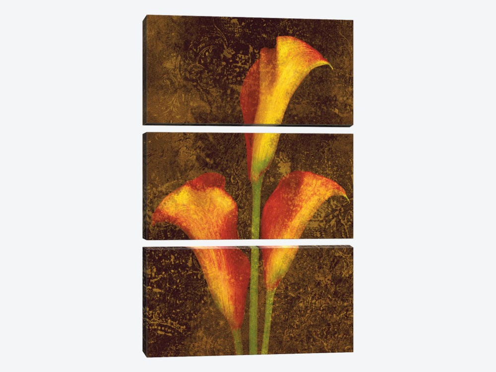 Callas by John Seba 3-piece Canvas Wall Art