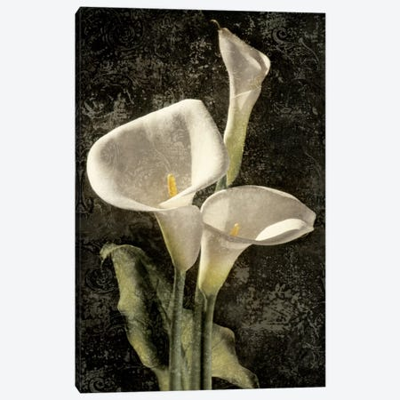 Callas I Canvas Print #JOH13} by John Seba Art Print