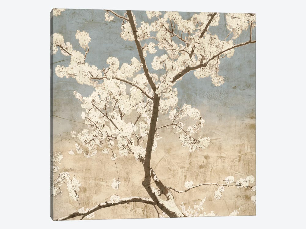 Cherry Blossoms I by John Seba 1-piece Canvas Artwork