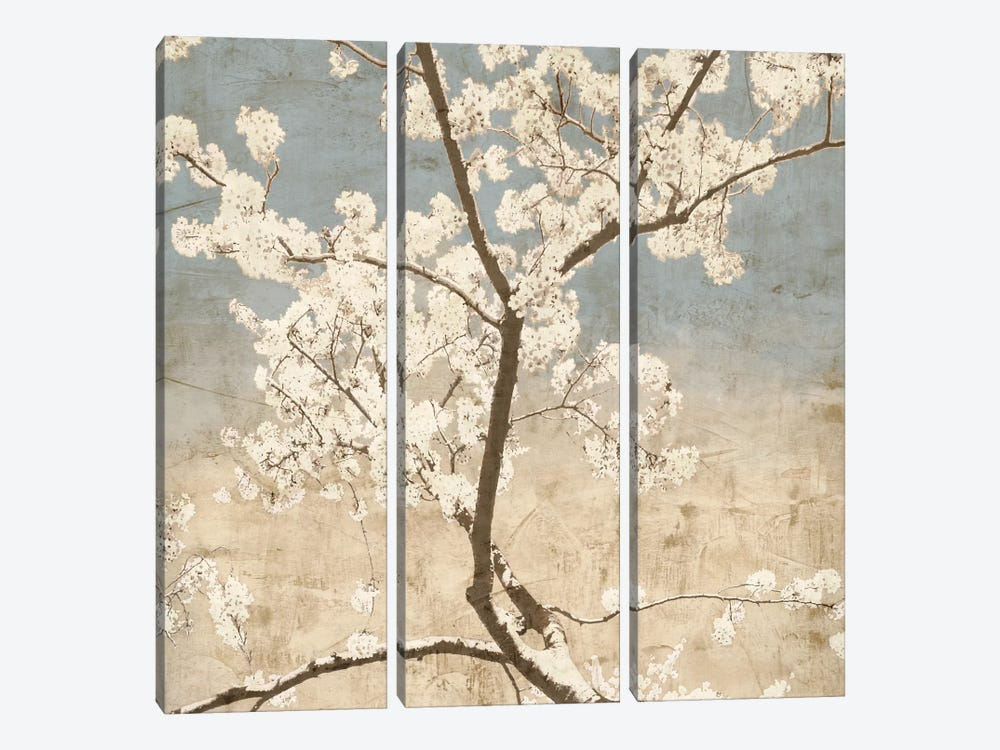 Cherry Blossoms I by John Seba 3-piece Canvas Artwork