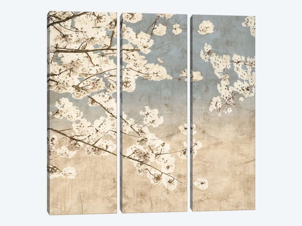 Cherry Blossoms II by John Seba 3-piece Art Print