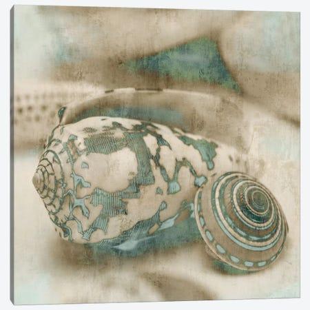 Coastal Gems I Canvas Print #JOH20} by John Seba Canvas Artwork