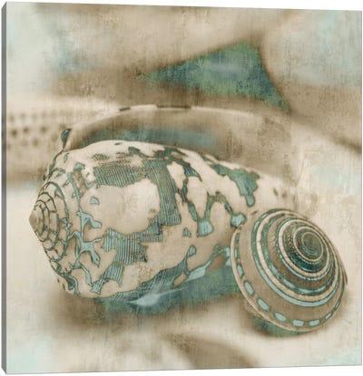 Coastal Gems I Canvas Art Print