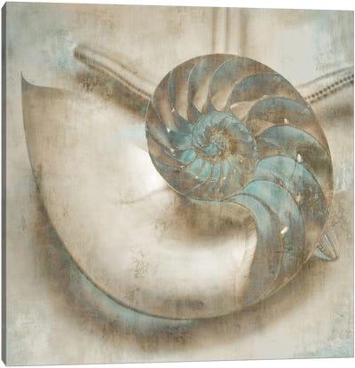 Coastal Gems IV Canvas Print #JOH23
