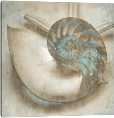 Coastal Gems IV Canvas Art Print