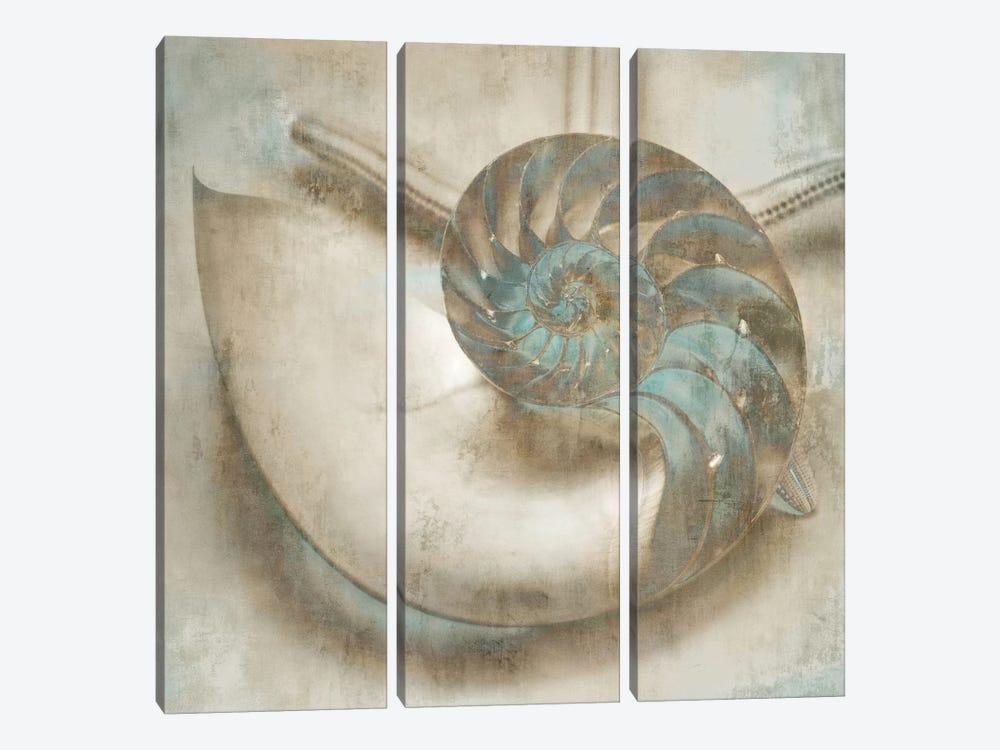 Coastal Gems IV by John Seba 3-piece Canvas Artwork