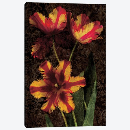 Decorative Tulips I Canvas Print #JOH25} by John Seba Art Print