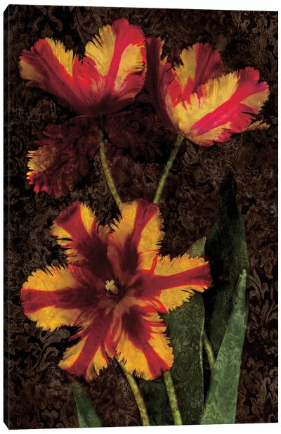 Decorative Tulips I Canvas Print #JOH25