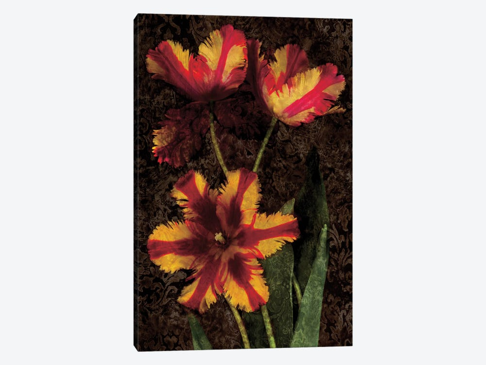 Decorative Tulips I by John Seba 1-piece Canvas Art