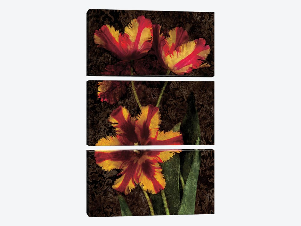 Decorative Tulips I by John Seba 3-piece Canvas Art