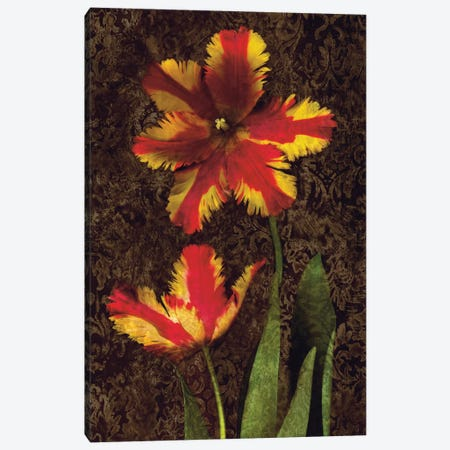 Decorative Tulips II Canvas Print #JOH26} by John Seba Art Print