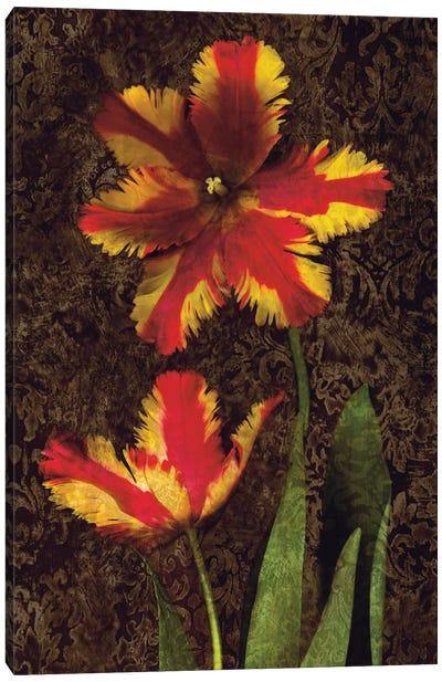 Decorative Tulips II Canvas Print #JOH26