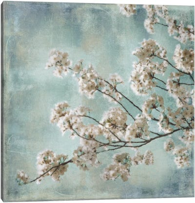 Aqua Blossoms I Canvas Art Print
