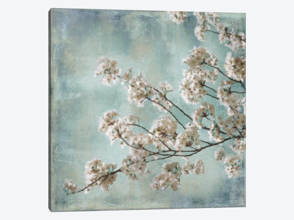 Aqua Blossoms I by John Seba 1-piece Canvas Art