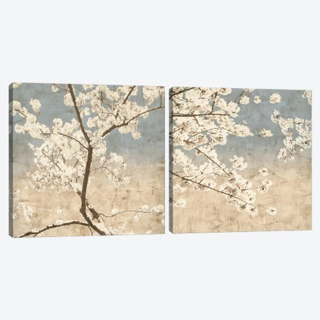 Cherry Blossoms Diptych Canvas Print Set #JOH2HSET001} by John Seba Canvas Art