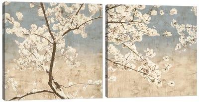 Cherry Blossoms Diptych Canvas Art Print