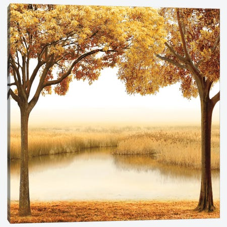 Golden Morning II Canvas Print #JOH34} by John Seba Canvas Artwork
