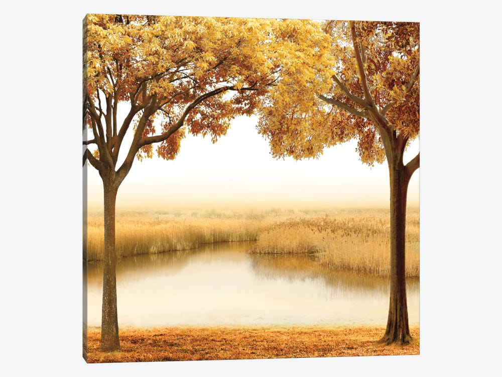 Golden Morning II by John Seba 1-piece Canvas Wall Art