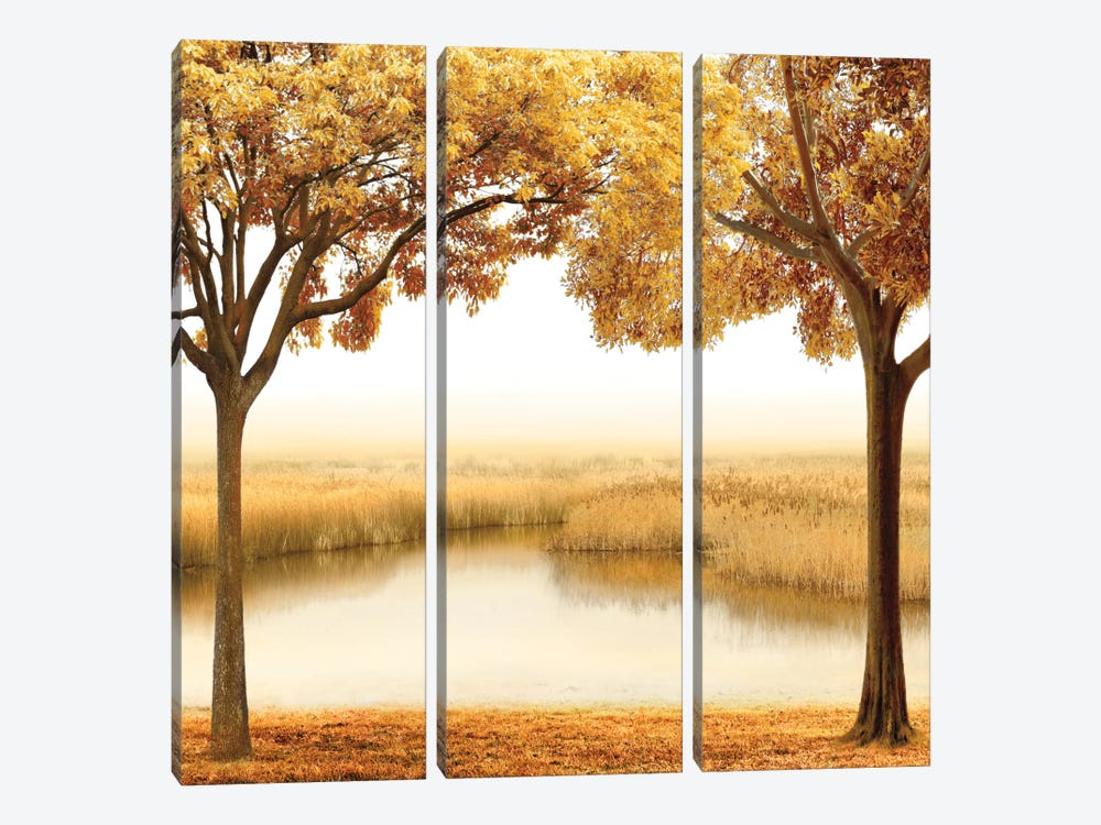 Golden Morning II by John Seba 3-piece Canvas Wall Art