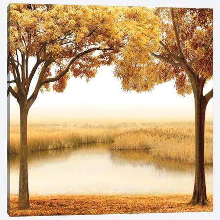 Golden Morning II Canvas Print #JOH34} by John Seba Canvas Artwork