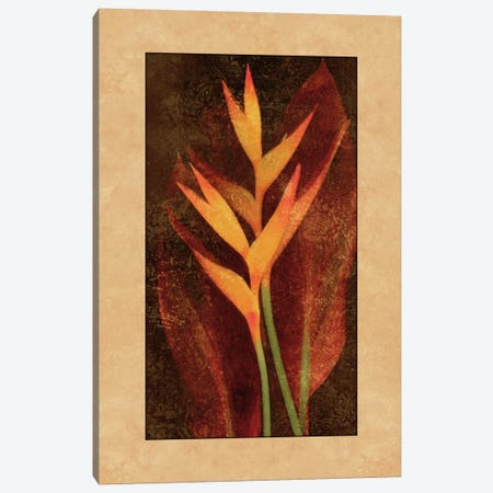 Heliconia Canvas Print #JOH35} by John Seba Canvas Artwork