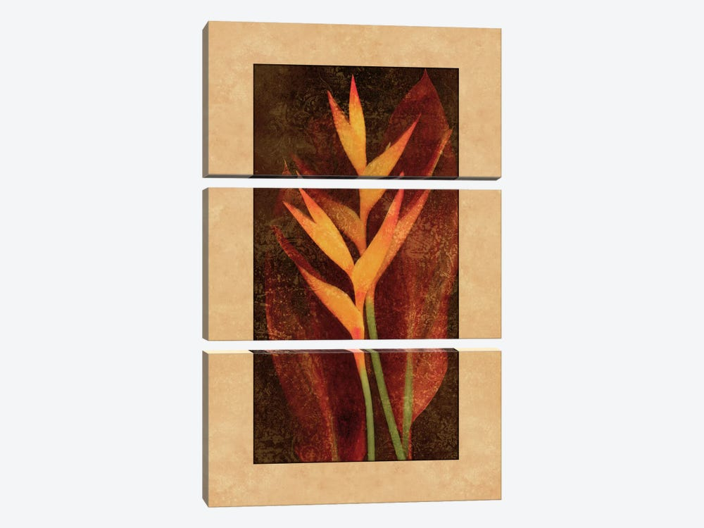 Heliconia 3-piece Canvas Print