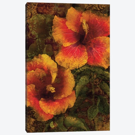Hibiscus I Canvas Print #JOH36} by John Seba Canvas Wall Art