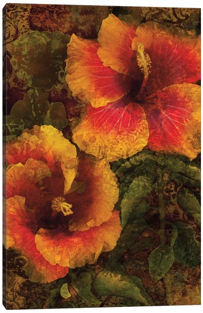 Hibiscus I Canvas Art Print
