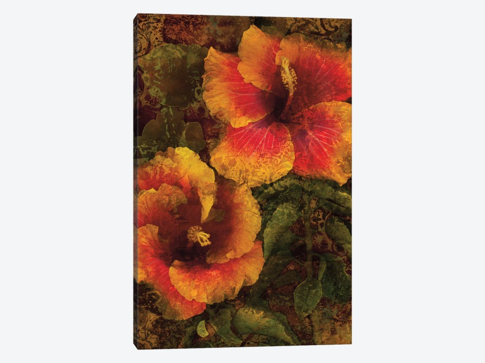 Hibiscus I by John Seba 1-piece Canvas Art
