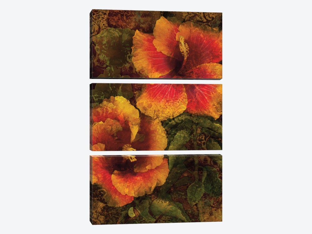 Hibiscus I by John Seba 3-piece Canvas Artwork
