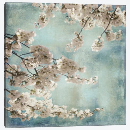 Aqua Blossoms II Canvas Print #JOH3} by John Seba Canvas Artwork