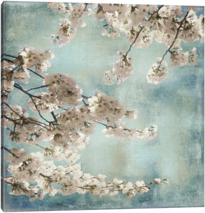 Aqua Blossoms II Canvas Art Print