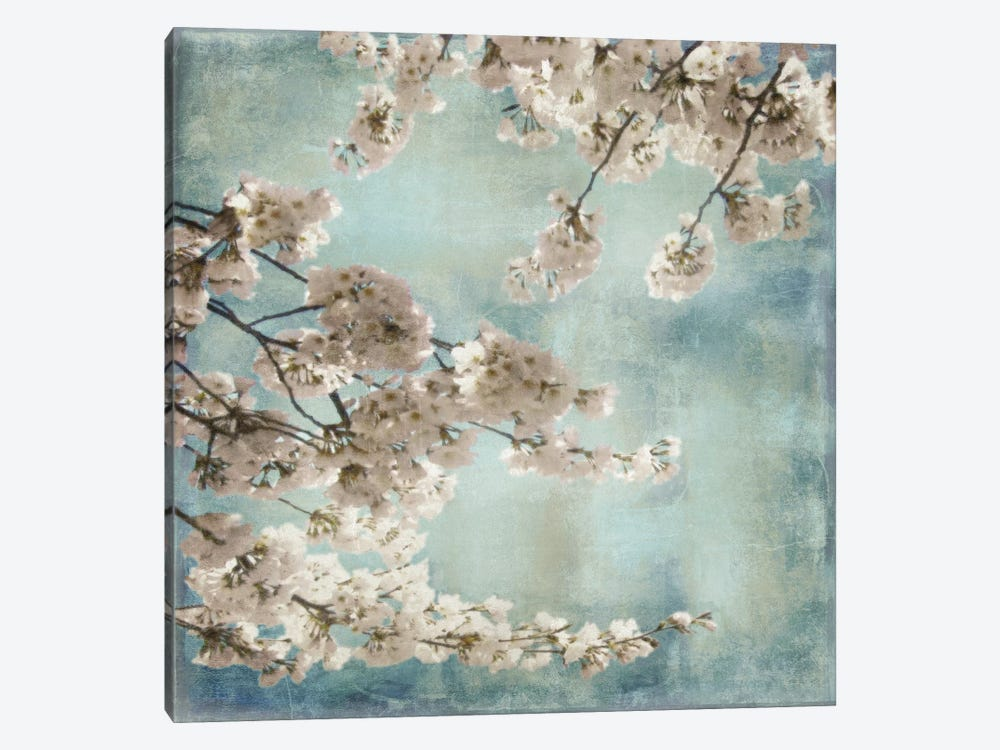 Aqua Blossoms II by John Seba 1-piece Canvas Print