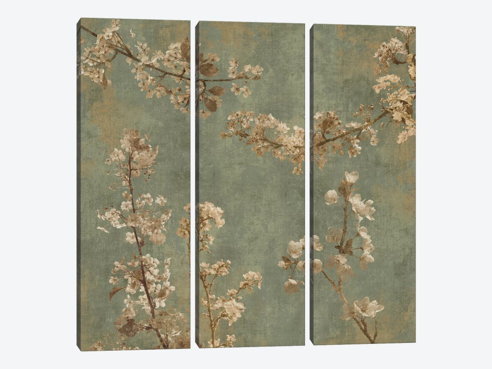 Morning Blossom I by John Seba 3-piece Canvas Art Print