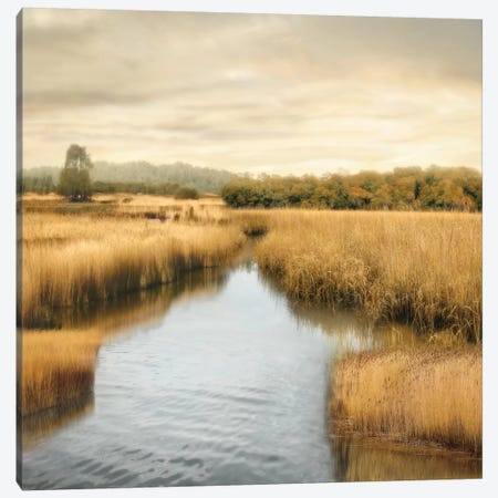 Morning Calm I Canvas Print #JOH48} by John Seba Canvas Art