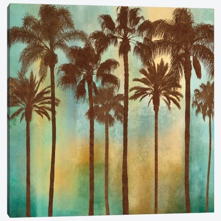 Aqua Palms I Canvas Print #JOH4} by John Seba Canvas Print